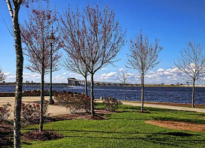 Photograph - Prien Lake Park by Judy Vincent