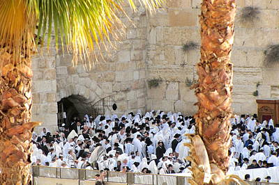 Art Print featuring the photograph Prayer Of Shaharit At The Kotel During Sukkot Festival by Yoel Koskas