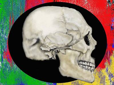 Mixed Media - Primary Skull by Lisa Stanley