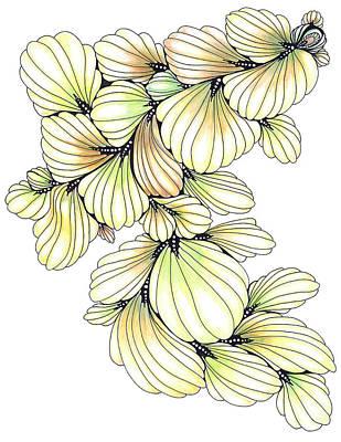 Drawing - Primavera by Alexandra Louie
