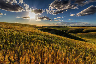 Wheat Field Sky Photograph - Primed To Finish by Mark Kiver
