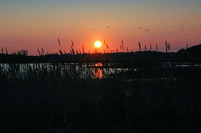 Primehook Sunset Art Print by See Me Beautiful Photography