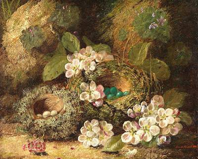 Primroses And Bird's Nests On A Mossy Bank Art Print by Oliver Clare