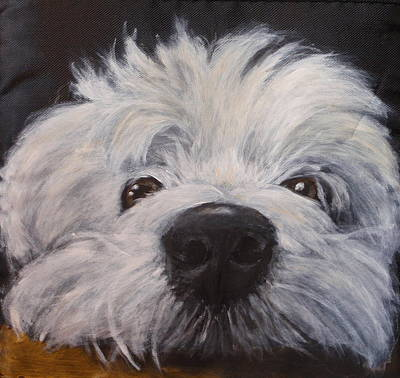 Dog Close-up Painting - Prince by Carol Russell