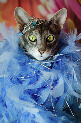 Princess Cat Art Print