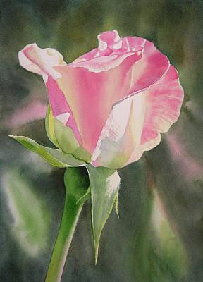 Princess Diana Rose Bud Art Print
