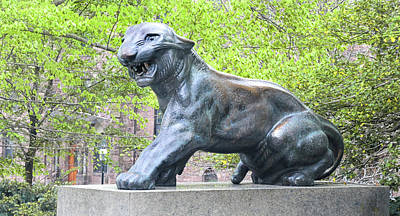 Photograph - Princeton Tiger Statue by Dave Mills