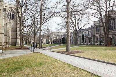 Princeton University Campus Art Print