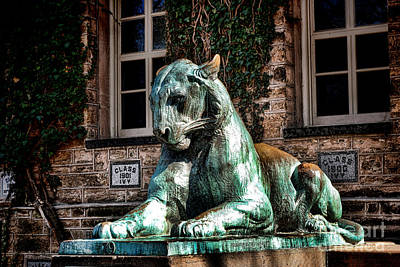Photograph - Princeton University Nassau Hall Tiger  by Olivier Le Queinec