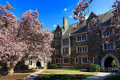 Art Print featuring the photograph Princeton University Pyne Hall Courtyard by Olivier Le Queinec