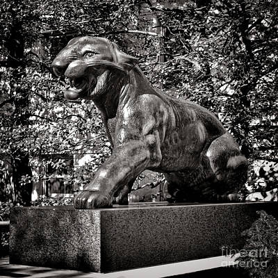 Photograph - Princeton University Tiger Sculture by Olivier Le Queinec
