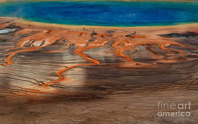 Photograph - Prismatic Spring Detail by DS Dodd