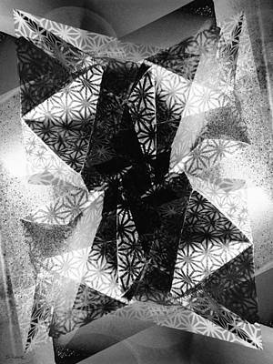 Photograph - Prismatic Vision - Black And White by Shawna Rowe