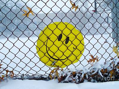 Collectors Corner Wall Art - Photograph - Prisoner Of Winter by Mioara Andritoiu