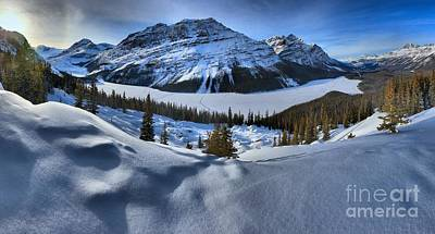 Photograph - Pristine Peyto Lake by Adam Jewell