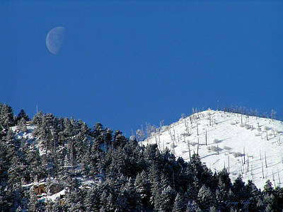 Photograph - Pristine Winter Morning by George Tuffy