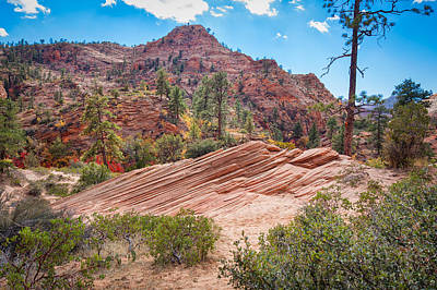 Photograph - Pristine Zion National Park by John M Bailey