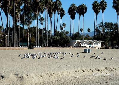Photograph - Private Beach by Rich Neuman