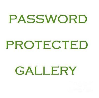 Photograph - Private Gallery Logo by Ausra Huntington nee Paulauskaite