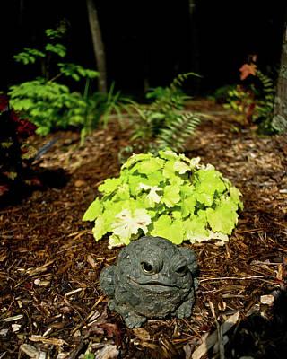 Private Garden Go Away Art Print by Douglas Barnett