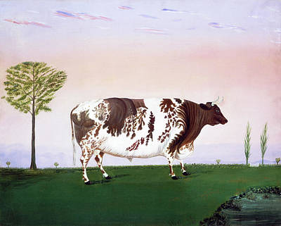 Painting - Prize Bull by H Call
