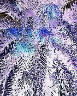 Photograph - Prodigious Palms by John Hintz