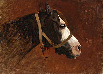 Jean-leon Gerome Painting - Profile Of A Horse by Jean-Leon Gerome