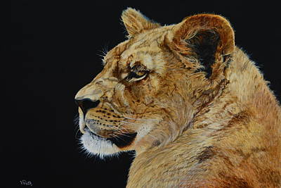 Painting - Profile Of A Lioness by Vicky Path