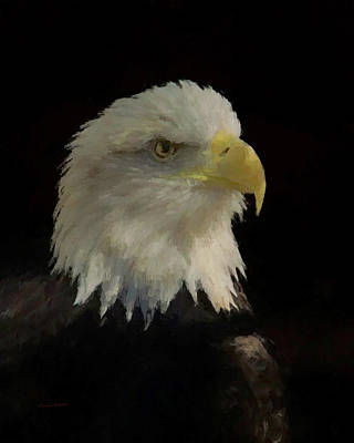 Digital Art - Profile Of An American Bald Eagle by Ernie Echols