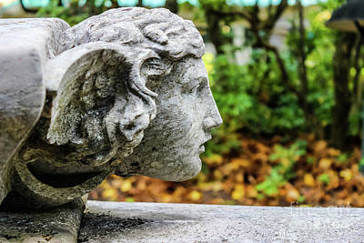 Garden Ornament Photograph - Profile Of An Angel by Colleen Kammerer