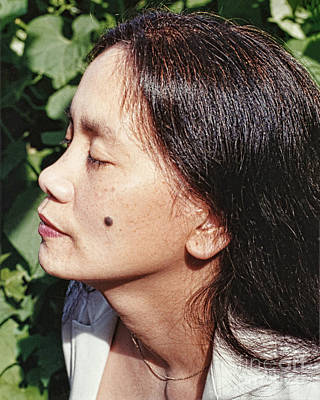 Photograph - Profile Portrait Of A Filipina Beauty With A Mole On Her Cheek  by Jim Fitzpatrick