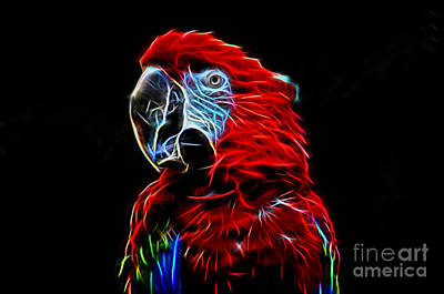Photograph - Profile Portrait Of A Parrot Iv Glow Version by Jim Fitzpatrick
