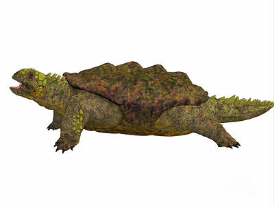 Triassic Painting - Proganochelys Side Profile by Corey Ford