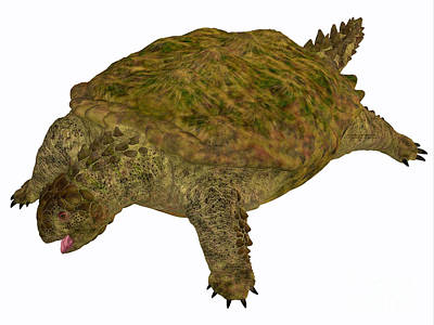 Triassic Painting - Proganochelys Turtle Body by Corey Ford