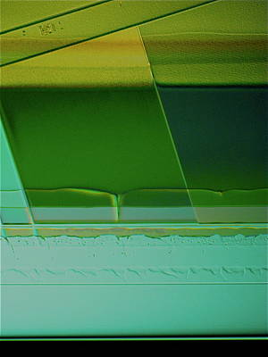 Abstract Photograph - Proleb by Sheep McTavish
