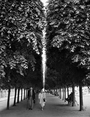 Promenade Au Jardin Art Print
