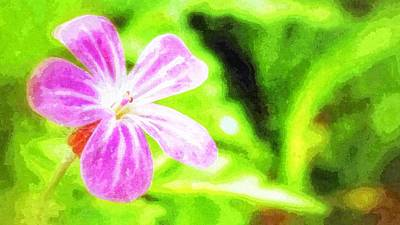 Photograph - Promise by Isabella F Abbie Shores