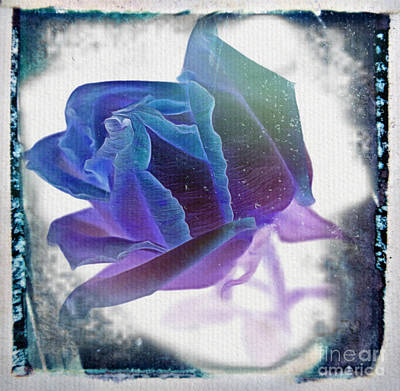 Abstract Rose Digital Art - Promise Of Yesterday by Krissy Katsimbras