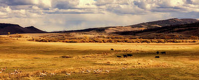 Photograph - Pronghorns And Bison - Wyoming by L O C