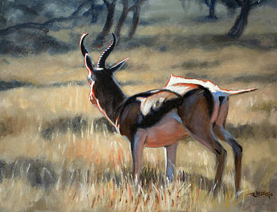 Painting - Pronking Springbock by Christopher Reid