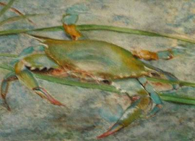 Propa Blue Crab Art Print by Sibby S