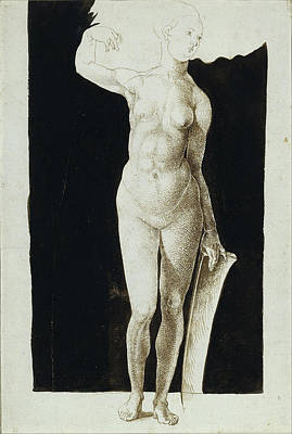 Study Of A Nude Drawing - Proportion Study Of Female Nude With A Shield by Albrecht Duerer