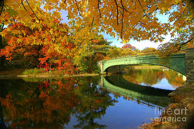 Photograph - Prospect Park Fall Foliage by Mark Gilman