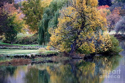Photograph - Prosser - Autumn Reflection With Geese by Carol Groenen