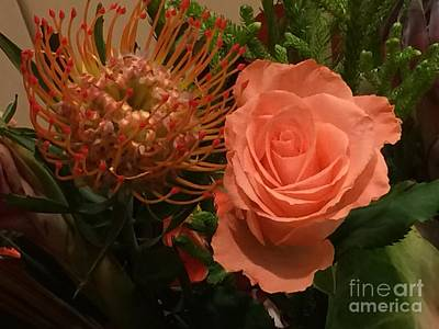 Photograph - Protea And Amsterdam Rose by Terri Thompson