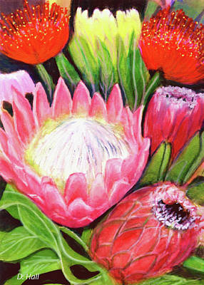 Protea Flowers #240 Art Print by Donald k Hall