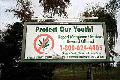 Photograph - Protect Our Youth by Frank DiMarco