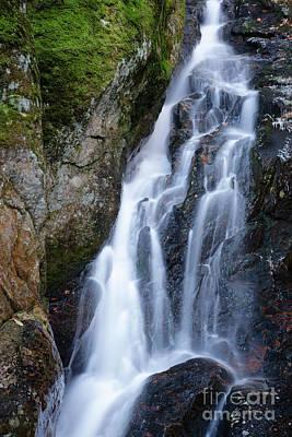 Roadside America Photograph - Proteus Falls - White Mountains New Hampshire Usa by Erin Paul Donovan