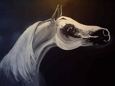 Proud Arabian Stallion Art Print by Glenda Smith