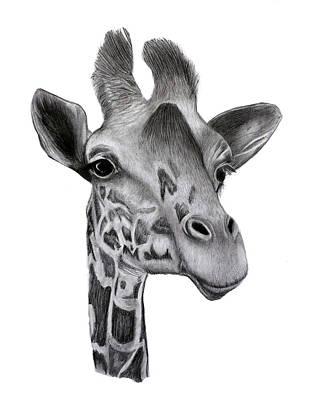Drawing - Proud Giraffe by Claire Fagan
